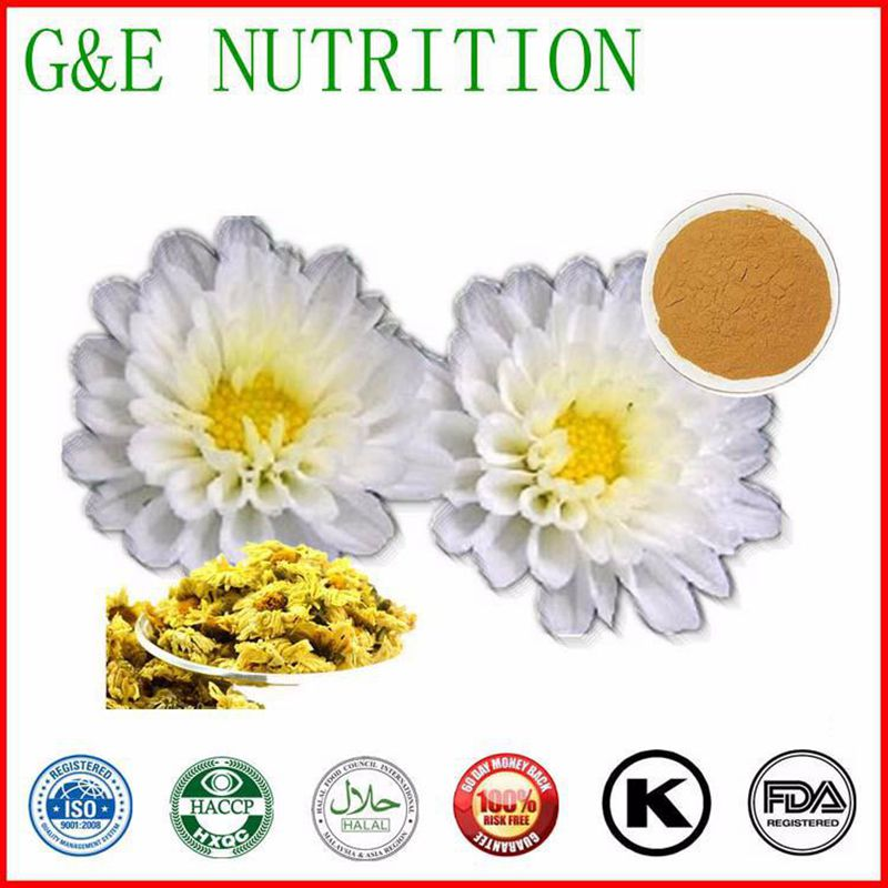 GMP Manufacturer Supply Feverfew Extract 600g<br><br>Aliexpress