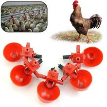 5Pcs/Set Chicken Fowl Drinker Bird Coop Feed Automatic Poultry Water Drinking Cups(China (Mainland))