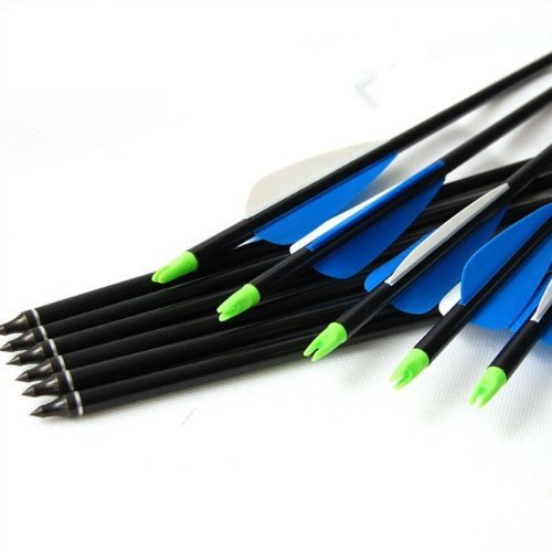 12pcs 30 Inch Long Target Practice Steel Point Archery Fiberglass Arrows with for Hunting Compound Bow