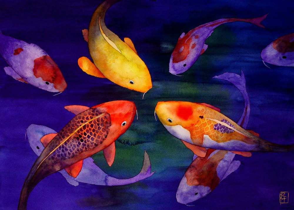 Koi fish watercolor for Pics of koi fish