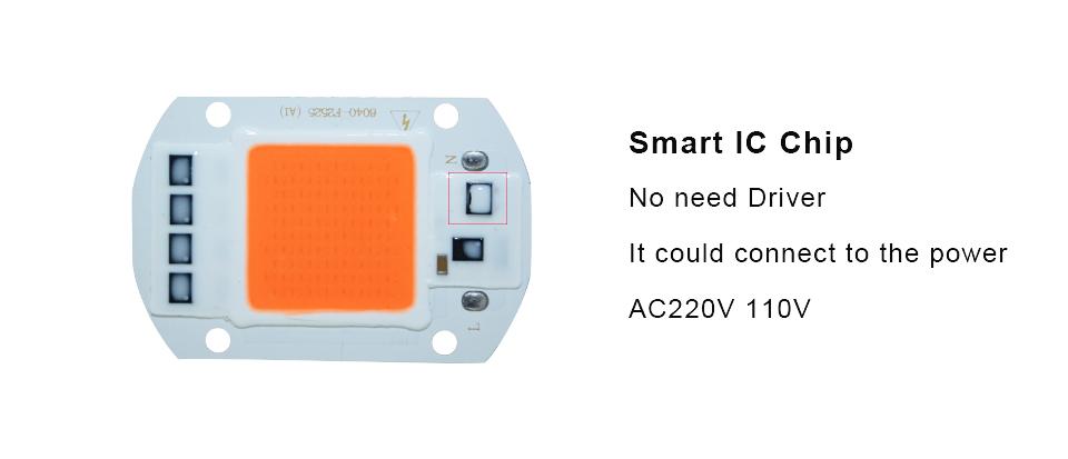 SMART IC