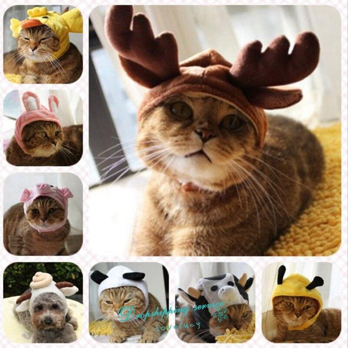 Cute Pet Transfiguration Cap Dog Cat Autumn Winter Warm Hat Holiday Festival Hat Accessories Pet Supplies Dog Caps Free Shipping(China (Mainland))