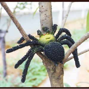 Halloween Tricky Funny creative rubber Horrible spider toys tricky  toys scared day cheap(China (Mainland))