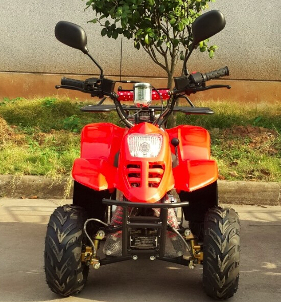 QUAD BIKE EEC QUAD BIKE EEC 110CC ATV(ATV110-018)(China (Mainland))