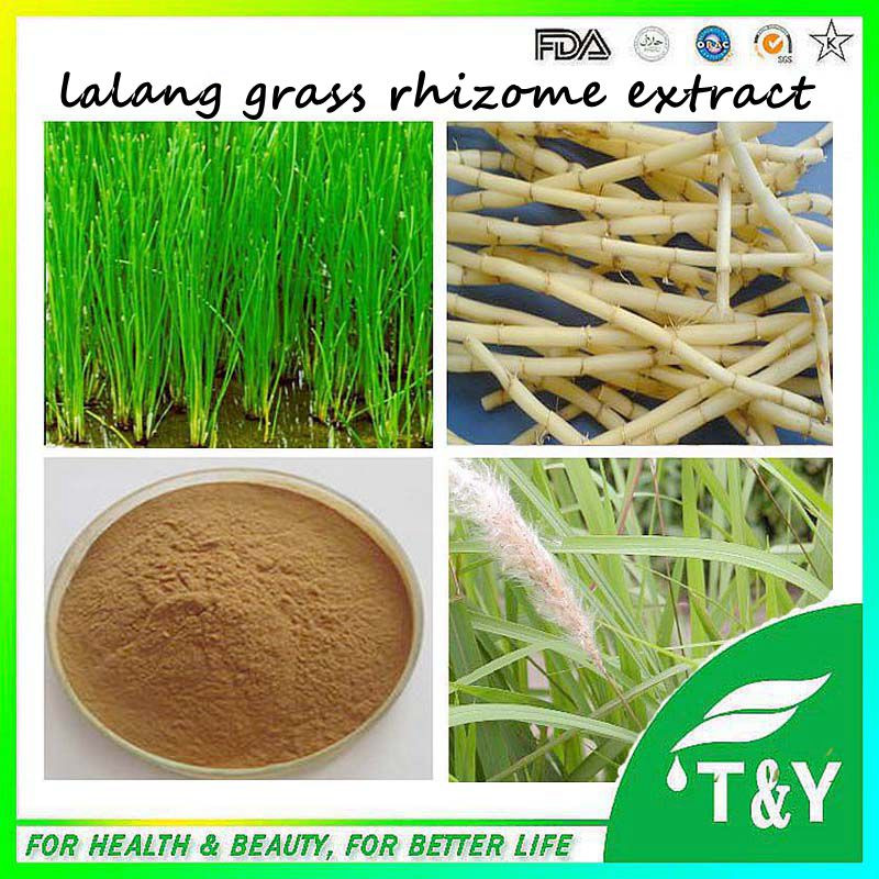Facoty supply natural plant extract powder Lalang Grass Rhizome Extract