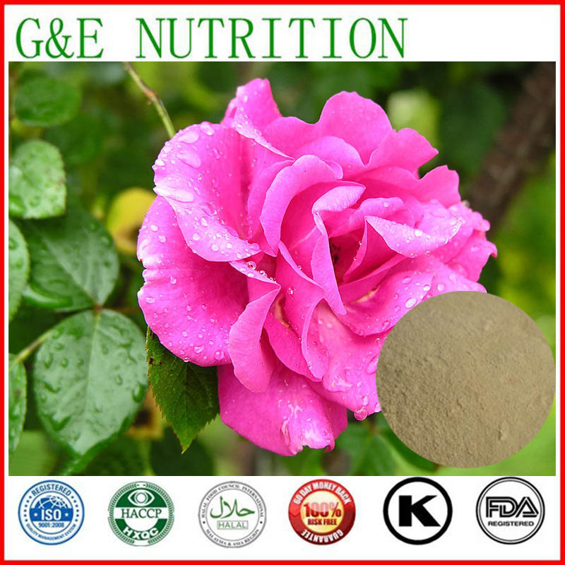 Wholesales of Rosa Centifolia Extract 800g<br><br>Aliexpress