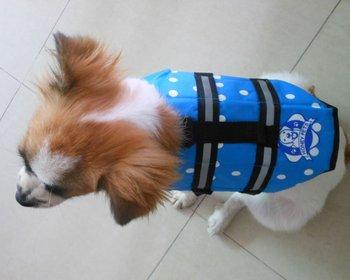 5PCS Blue Polka Dots Pet Dog Life Jacket Vest Safety Vest Size S