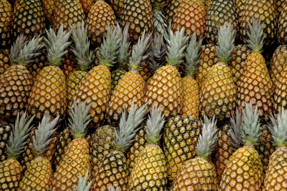 New pineapple Seeds!!! 100PCS / bag Dwarf pineapple seeds, sweet juicy delicious fruit seeds, Rare Bonsai Plant free delivery(China (Mainland))