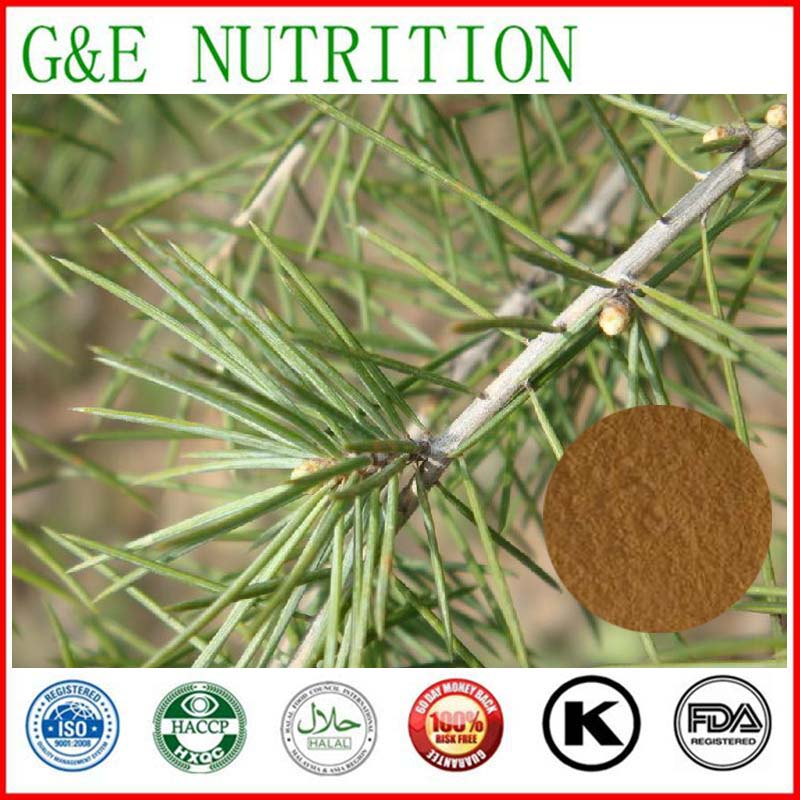 600g Free shipping Pine needle Extract with best price<br><br>Aliexpress