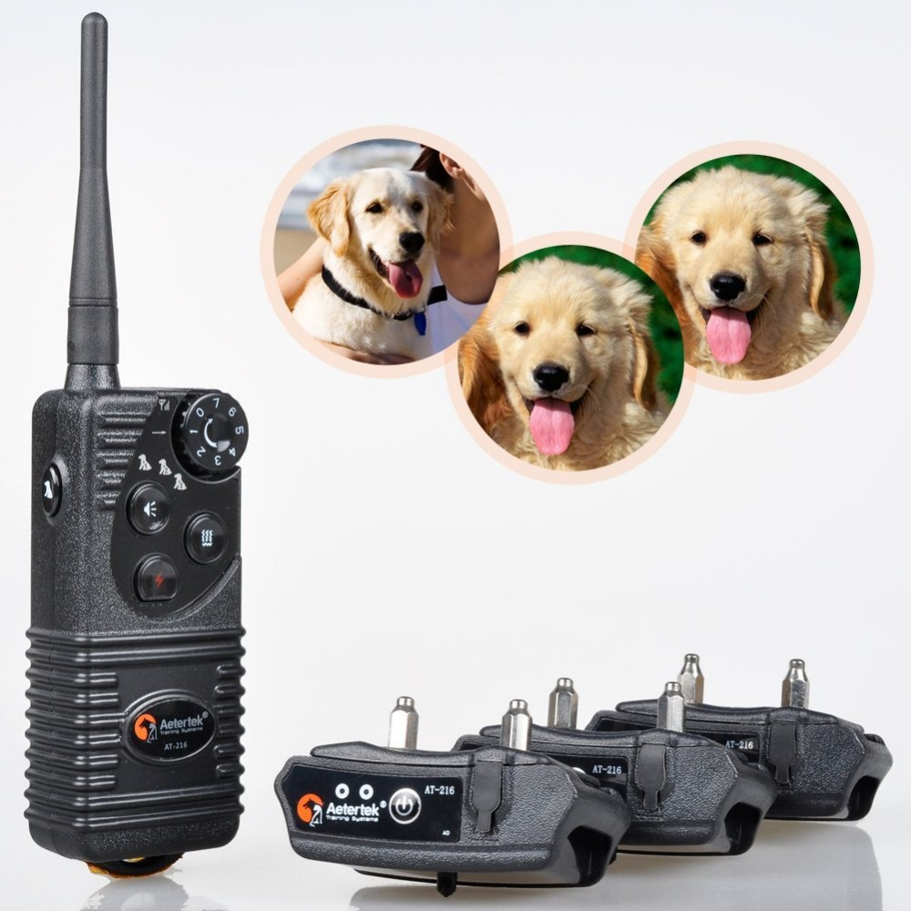 Aetertek At-216W 3 training dog system water-resistant rechargeable training dog collar remote e-collars dogs(China (Mainland))