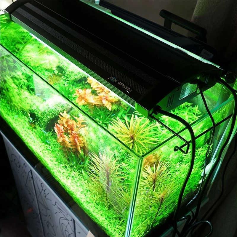 "48""(120CM) ODYSSEA 216W Aquarium T5HO Quad Light marine reef tank freshwater salt water aquarium water plant lighting fixture(China (Mainland))"