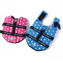 popular dog swimming