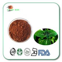 Kosher/Halal/ISO Low Price High Quality Epimedium Leaf Extract,epimedium extract ,Horny Goat Weed Extract Powder factory price(China (Mainland))