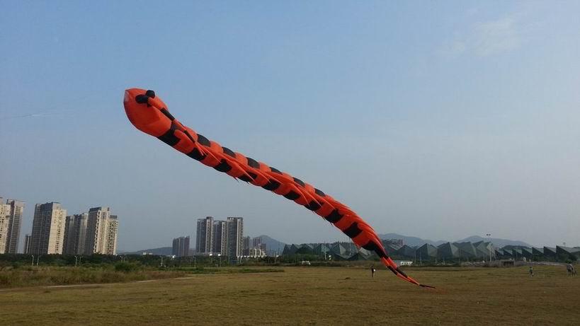 2016 new Inflatable snakes 3d kite Large three-dimensional kites Software centipede huge kite flying toys pipa soft kites kiting(China (Mainland))
