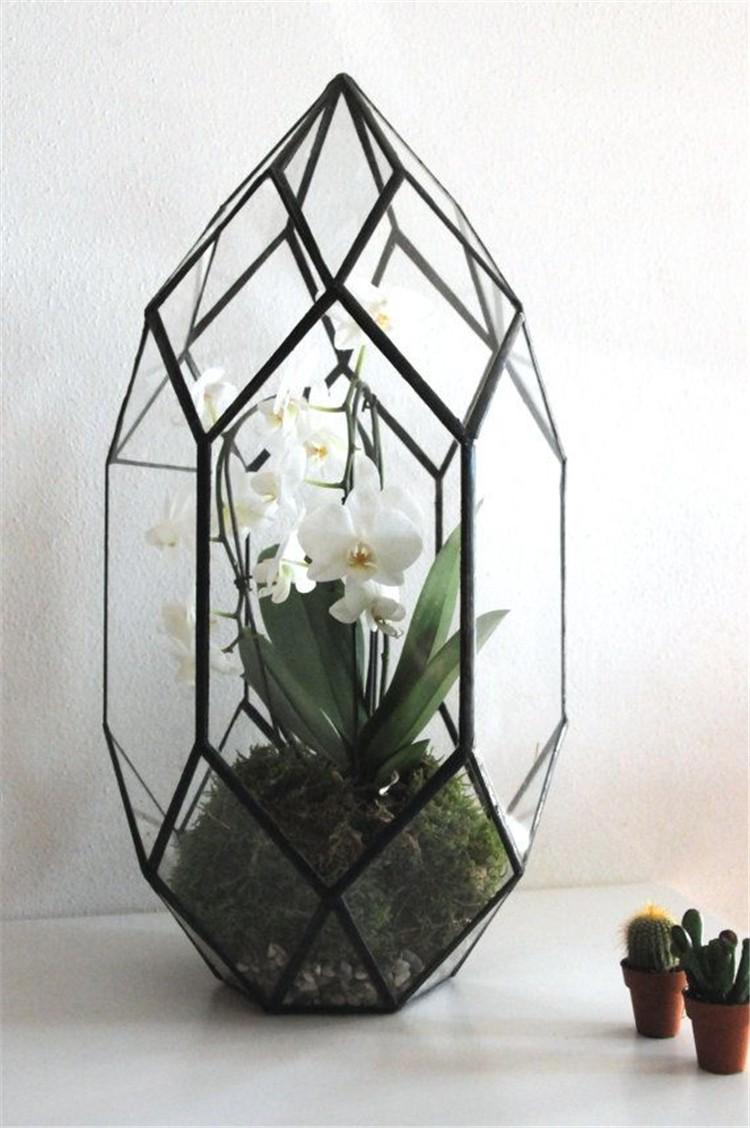 Glass Terrariums2