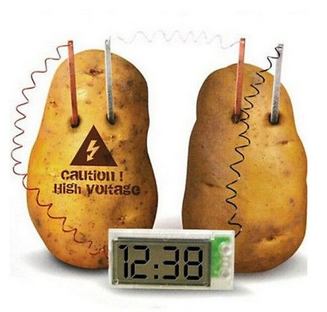 FD1067 Green Science Potato Clock Cell Home School Lab Educational Kit Toys DIY(China (Mainland))