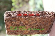 56 year old raw Puer Tea 250g pu er tea meng hai antique leaf wild camphor
