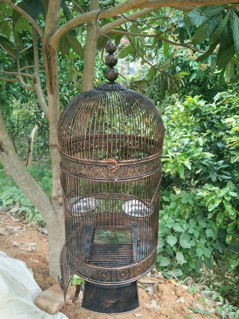 Jaulas Decoracion Comprar ~   Birdcage o decoraci?n jaula para bird alta calidad env?o gratis