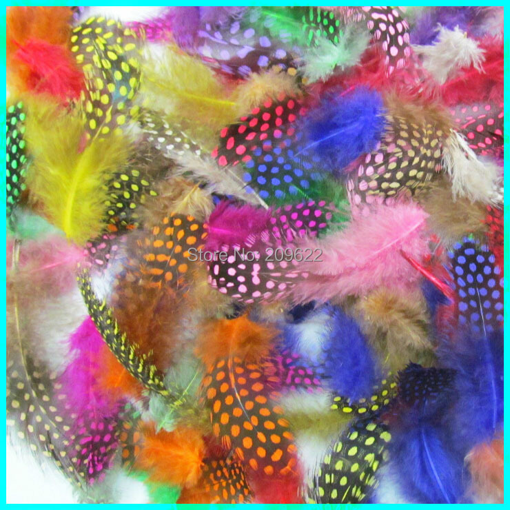 Dyed Dot Guinea Fowl Feather, 5-8 CM 500 Pieces Colorful Petite Feather , Feather Fabulous For Bags And Purses(China (Mainland))