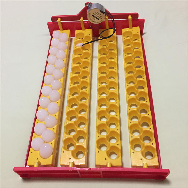 Birds Automatic Incubator 88 eggs Turn the eggs tray Pigeon Quail Parrot Incubator tray 110V 220