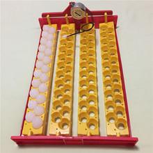 Birds Automatic Incubator 88 eggs Turn the eggs tray Pigeon Quail Parrot Incubator tray 110V / 220 V