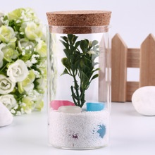 2016 Popular 350ml Clear Glass Bottle with Sealed Cork Beans Tea Leaves Storage Container   hot store(China (Mainland))