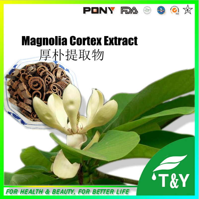 GMP Factory Provide Best Quality Magnolia Cortex Extract 100g/lot(China (Mainland))