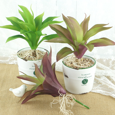 (5 pcs/lot)New Zealand orchid pot of export trade ornaments plastic artificial plants for decoration of plastic flower(China (Mainland))