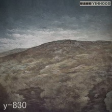 Mysterious scenic Backdrop Y830,10ft x20ft Hand Painted Photography Background,estudio fotografico,backgrounds for photo studio