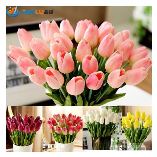 Гаджет  (50 pieces/lot) Tulip seeds,Tulipa gesneriana,potted plants, planting seasons, flowering plants None Дом и Сад