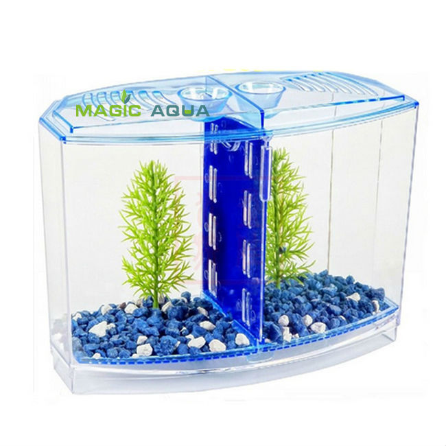 Fighting BETTA FISH TANK KIT AQUARIUM FISH TANK TWIN BOW FRONT TANK 8 ...