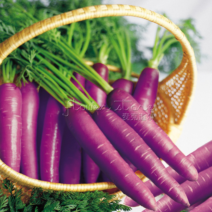 400 NON GMO Purple Haze Carrot Seeds Hybrid Delicious Free Shipping(China (Mainland))