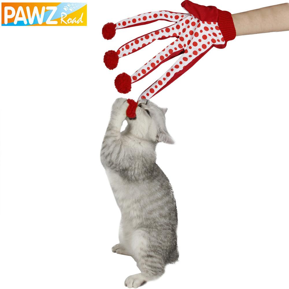 pet carrier cat