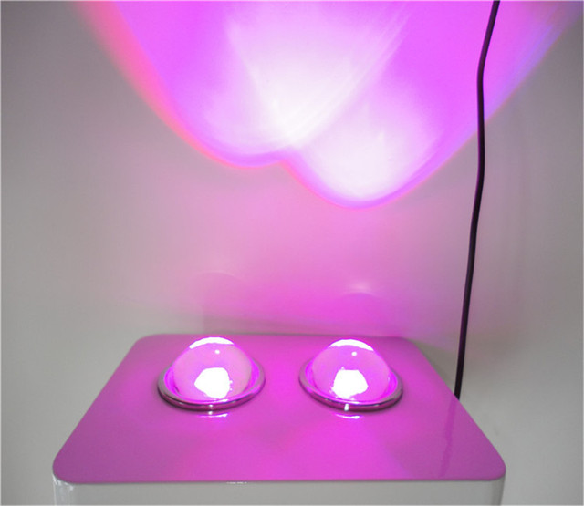 light more energy efficient from reliable led grow light 500w. Black Bedroom Furniture Sets. Home Design Ideas