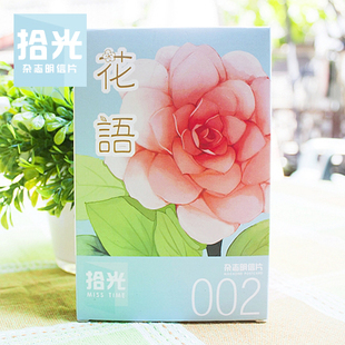 Christmas casamento wedding florid fresh flowers hand-painted magazine 30 002 plants / units^greeting card postcard(China (Mainland))