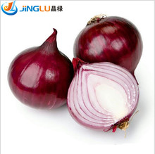 100  Onion Red Creole Great  Vegetable Seeds~organic~, Great Healthy Vegetable ,make You Look Younger