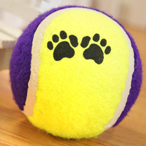 Cute Pets Suppliers Dog Cat Tennis Balls Run Play Chew Toys Dog Pet ToysWX(China (Mainland))
