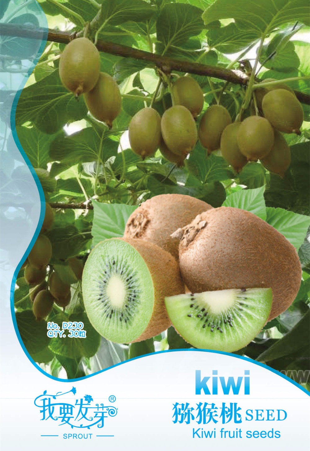 (Min. mix Order is $5.99) 1 pack High quality Kiwi tree seeds Original package, Full particles Kiwi fruit seeds Free shipping(China (Mainland))