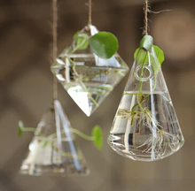 Geometric Vase Mini Hanging Glass Terrarium
