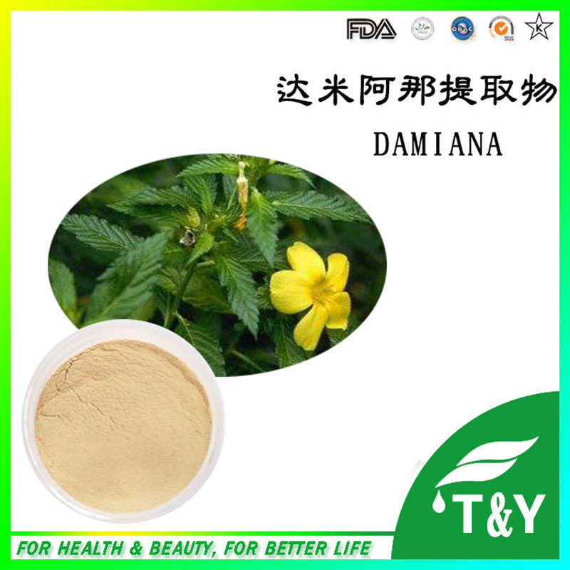 Manufacturer Supply Natural Damiana Extract 10:1/Damiana Leaf Extract powder 400g/lot