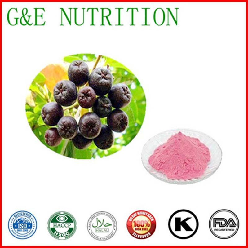 Natural factory supply organic aronia berry   10:1  1000g<br><br>Aliexpress