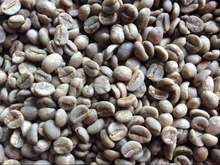 1000g China Yunnan Green Coffee Bean Bourbon AA Free Shipping