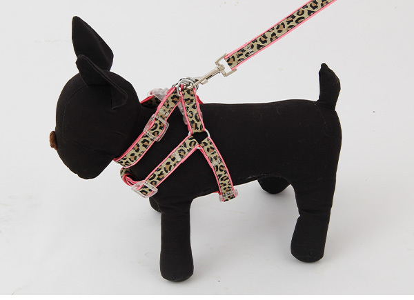 Domestic Delivery Leopard Stripe Collar Leashes Harness Set Pet Leash Dog Adjustable Safety Walking Outing Rope Puppy Cat Using(China (Mainland))