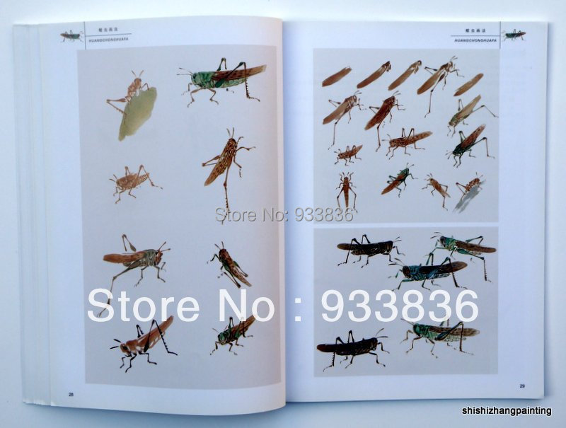 Chinese book technique of insects painting from master Xiao Lang brush ink art(China (Mainland))