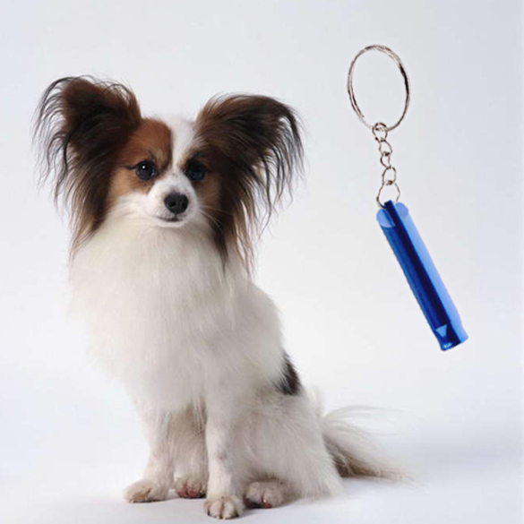 Dog Whistle Flute Stop Barking Silent Ultrasonic Sound Pet Dog Training Repeller Train Portable Strap Pendant Keychain(China (Mainland))