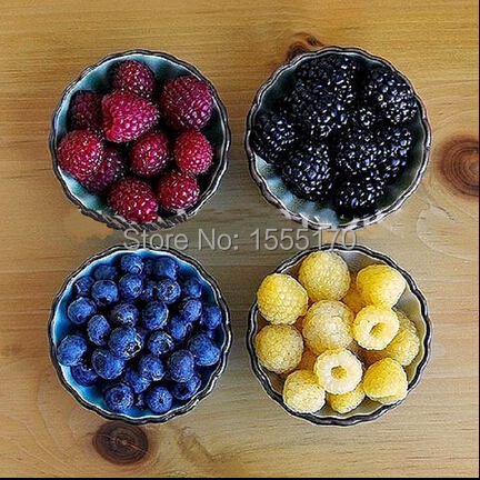 Free shipping, 4 kinds of color 50 PCS raspberry seeds (50 blue, 50 black, 50 red, 50 yellow) delicious fruit plants(China (Mainland))