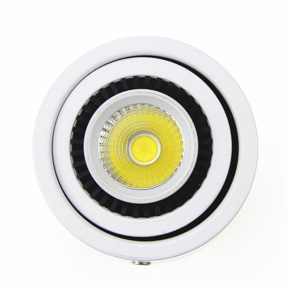 led downlight (18)