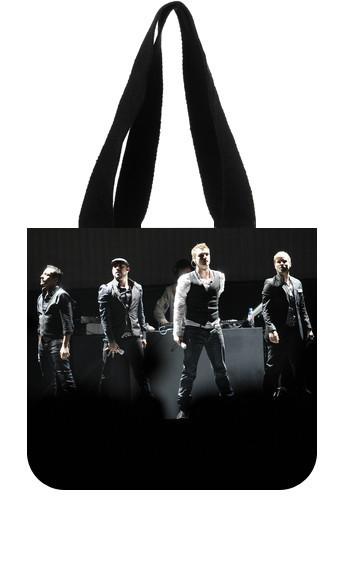 Backstreet Boys Custom Reusable Canvas Shopping Tote Bag (2 Sides) U850726(China (Mainland))