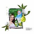 10pcs NEWOlive Anti Dandruff Shampoo Oil Control Beauty Hair Care Anti Itching Nourishing Refreshing Moisturizing Mild