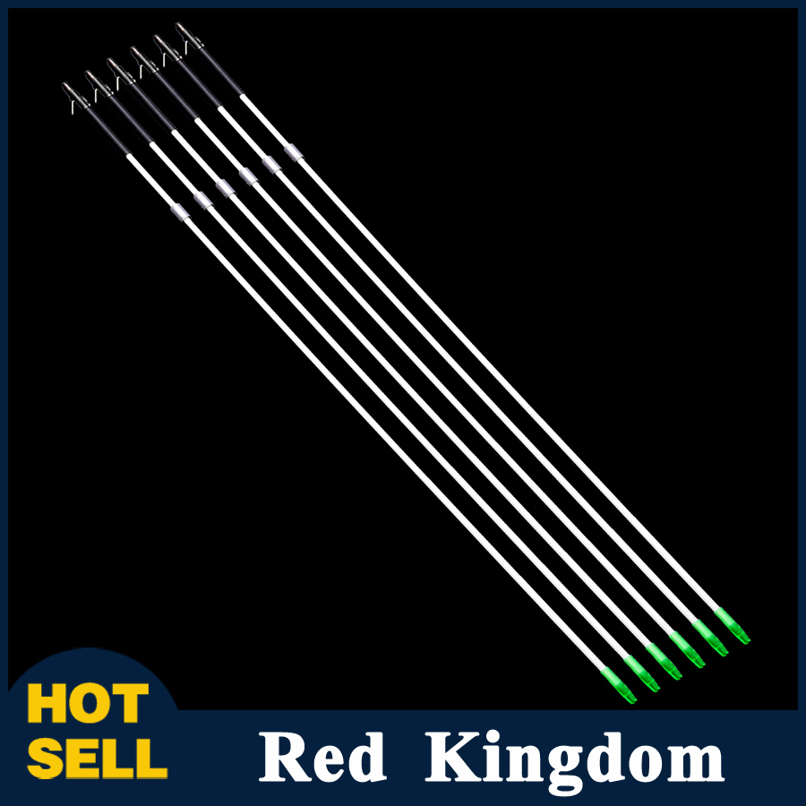 6pcs lot Hunting Fish Fishing Arrows Target Fishing Archery Arrows for Hunting Compound Bow and Arrow